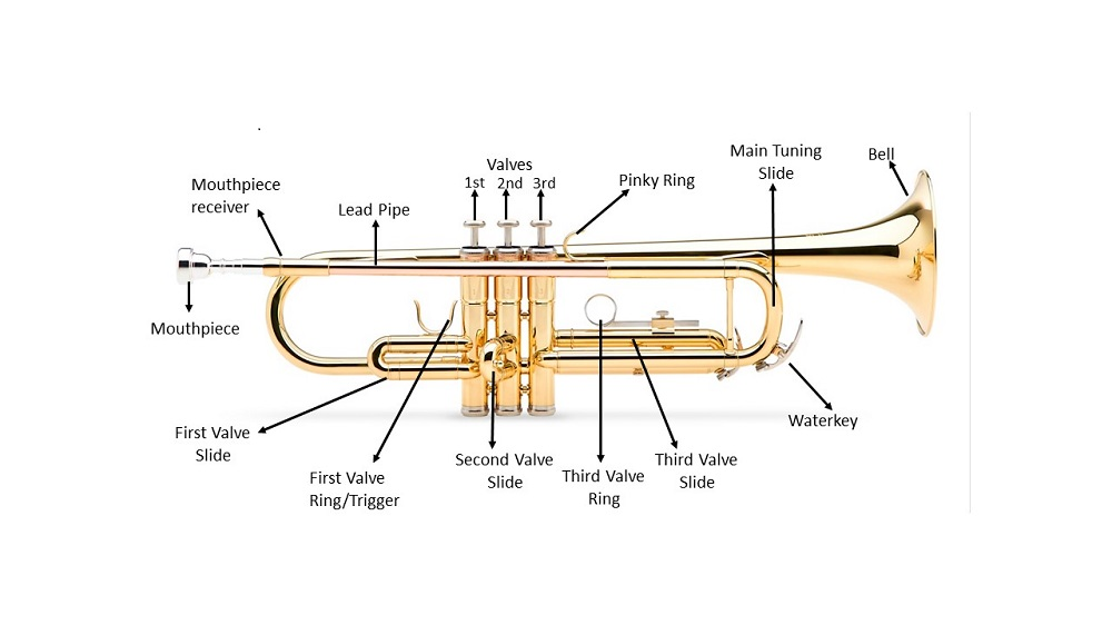 Anatomy of a Trumpet - What Are the Main Parts of a Trumpet