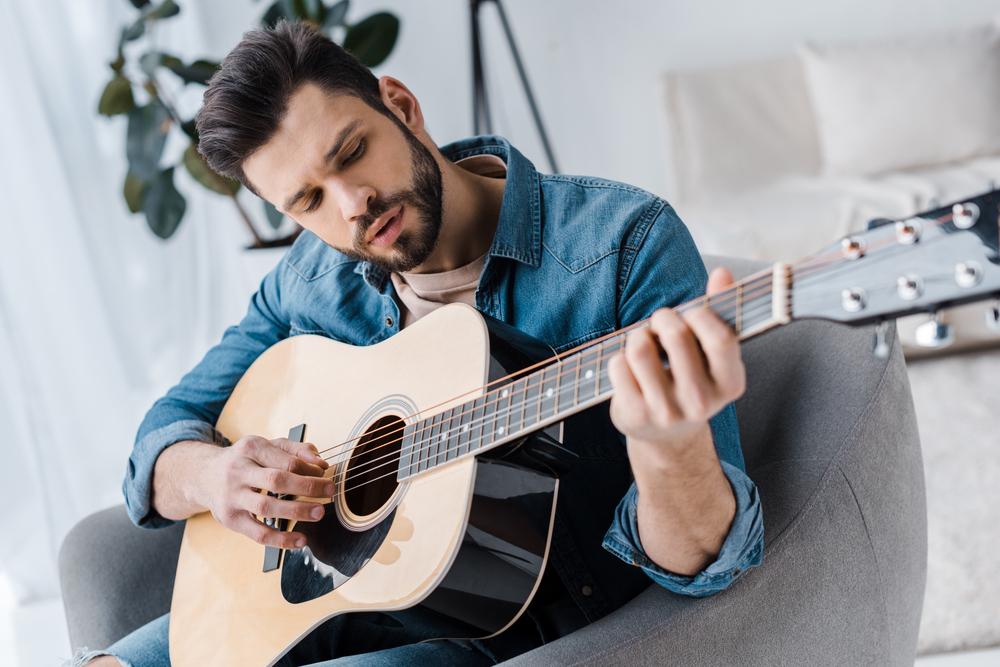 Seagull Artist Mosaic Guitar Review