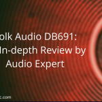 Polk Audio DB691 Review