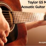 Taylor GS Mini Review
