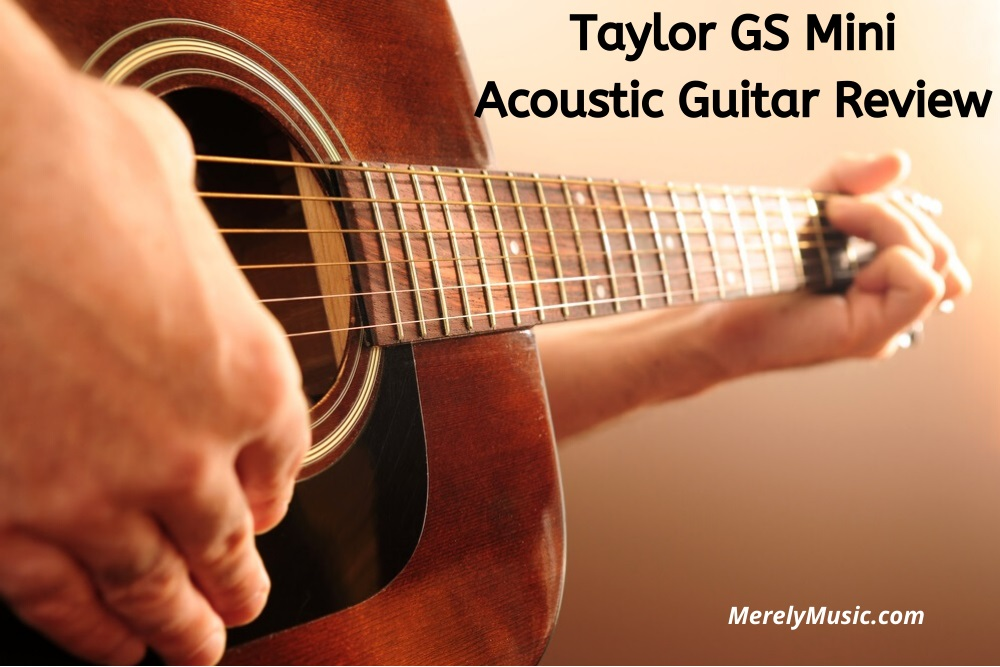 Taylor GS Mini Review
